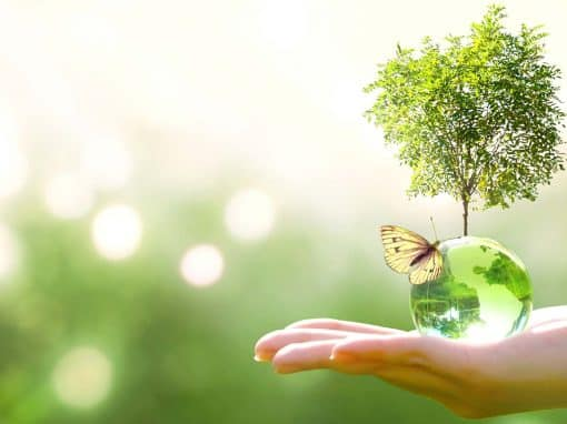 Usage prioritaire de produits Eco-responsables
