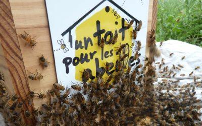 Propertis renouvelle son engagement auprès des apiculteurs